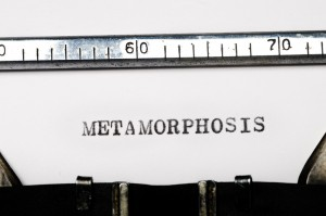 "Flash 405, June 2016: ""Metamorphosis"" Winners"