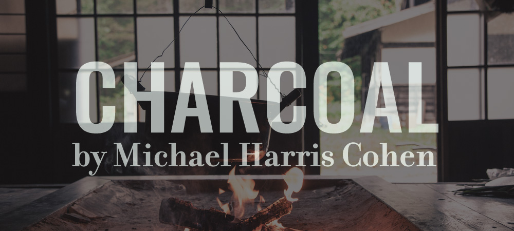 Flash405-Charcoal-MichaelHarrisCohen