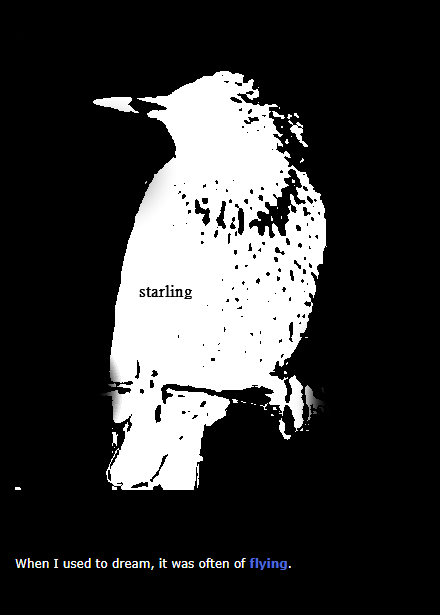 "Starling by Kevin M. Flanagan - an Experimental/Hyperliterary work in Exposition Review, Vol. V ""Act/Break"""
