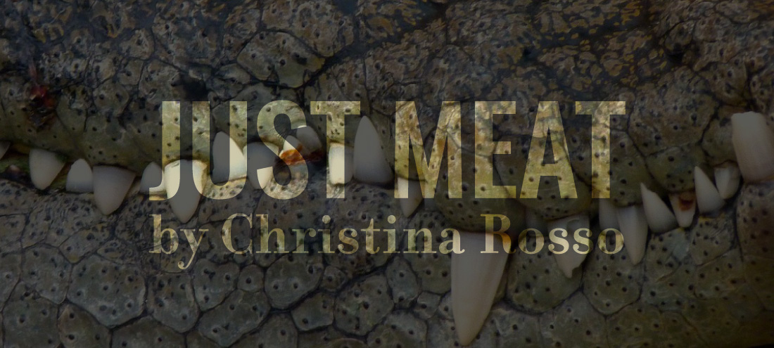 Flash 405, April 2020: Change In Perspective - Just Meat by Christina Rosso
