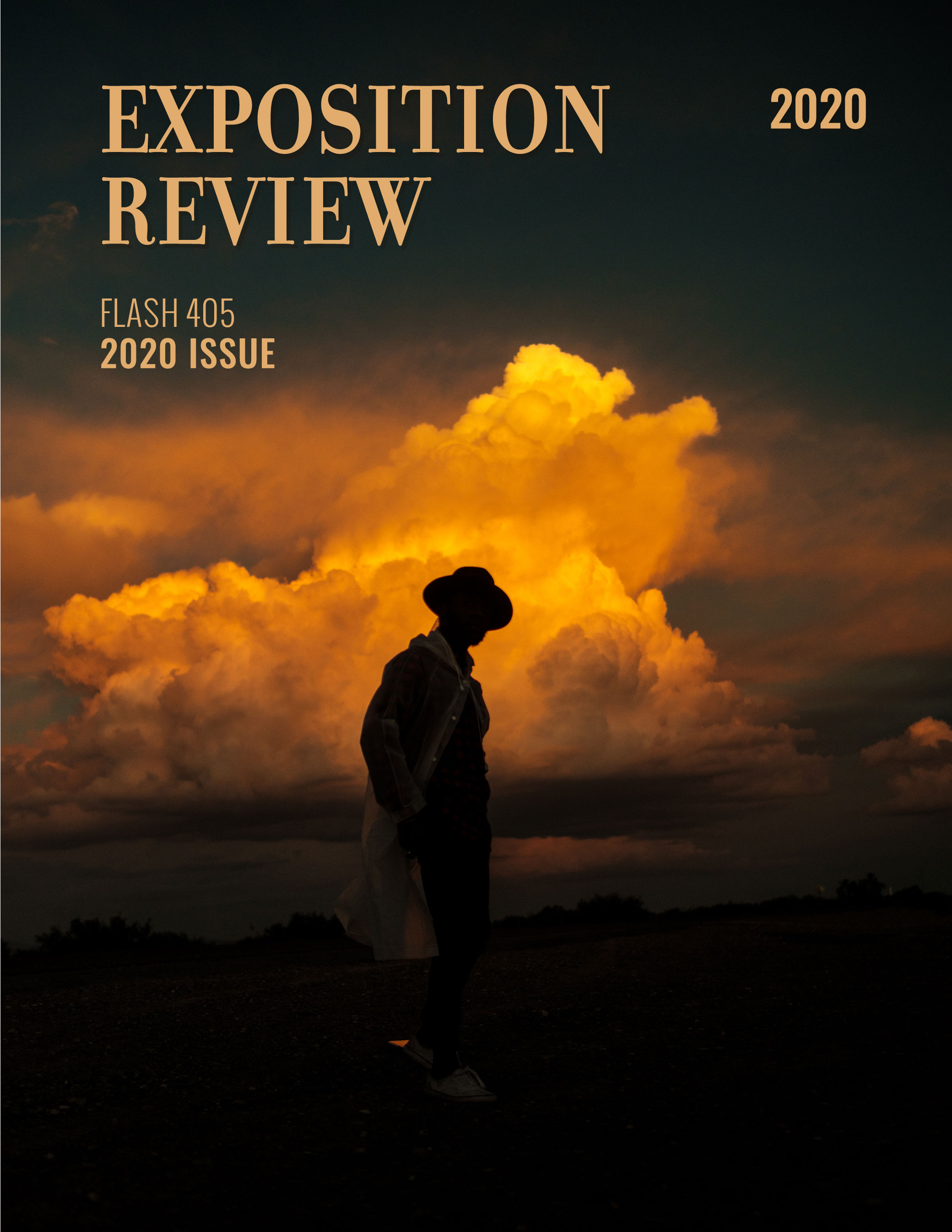 Exposition Review Flash 405 2020 Issue