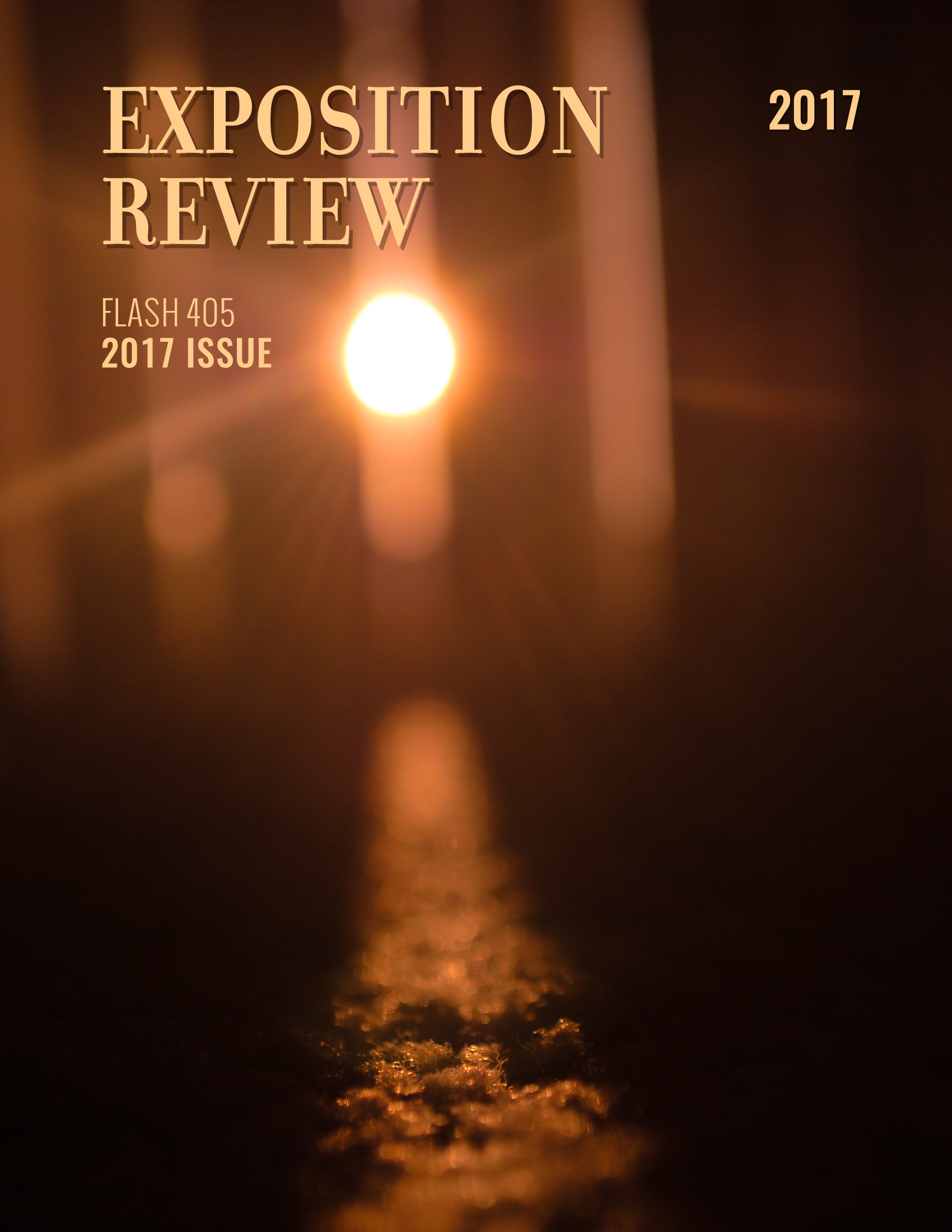 Exposition Review Flash 405 2017 Issue